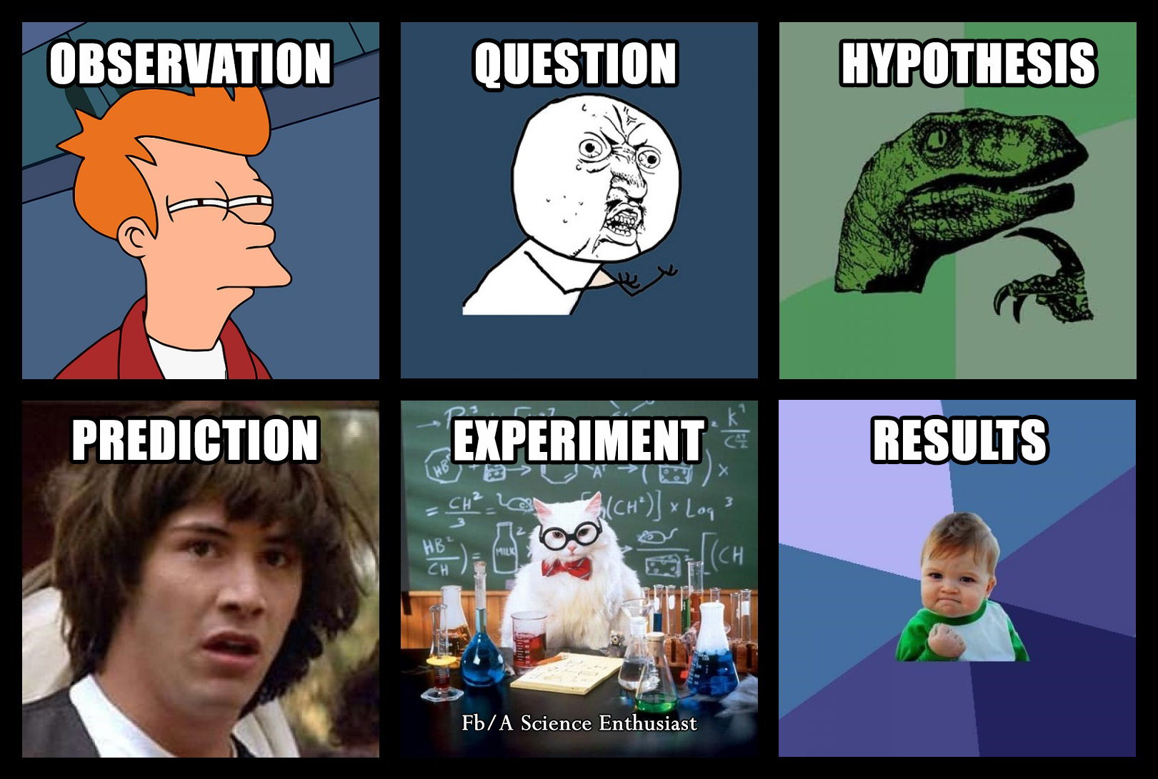 scientific method science steps meme memes types 8th grade matter version projects biology visit