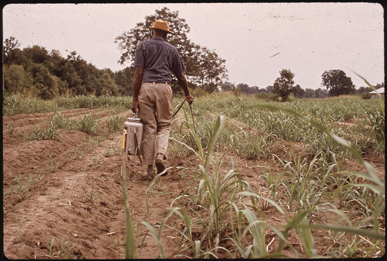 Spraying Pesticides (Louisiana, USA)